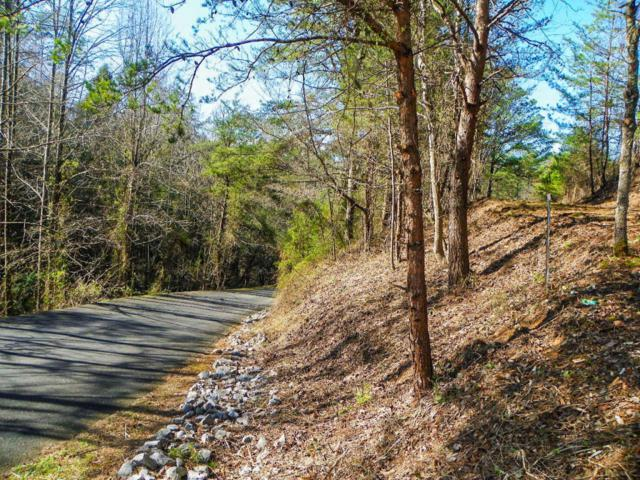 Lot # 1 Oldham Springs Way, Sevierville, TN 37862 (#992935) :: Billy Houston Group