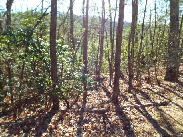 Ridgehigh Pass, Sevierville, TN 37862 (#993881) :: The Creel Group | Keller Williams Realty