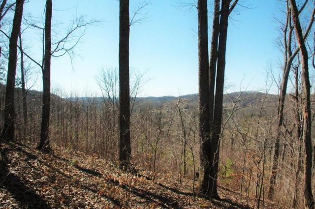 N Campbell Station Road, Farragut, TN 37922 (#994075) :: Billy Houston Group