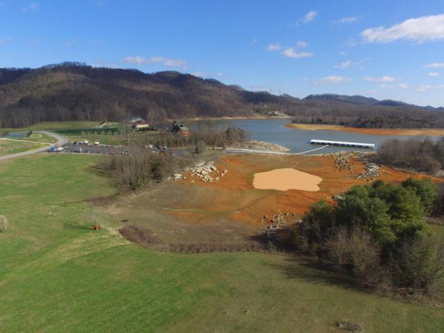 11005 Nautical Point, Mooresburg, TN 37811 (#994936) :: Billy Houston Group