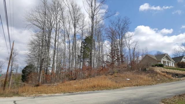 Emory River Road Rd, Harriman, TN 37748 (#995044) :: Billy Houston Group