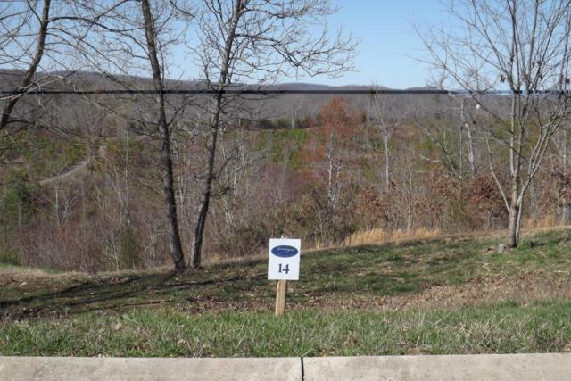 Lot 14 Hidden Forest Tr, Spring City, TN 37381 (#995090) :: Billy Houston Group