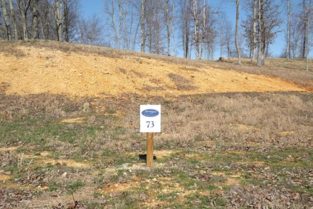 Lot 73 Ridgeway Pass, Spring City, TN 37381 (#995169) :: Billy Houston Group