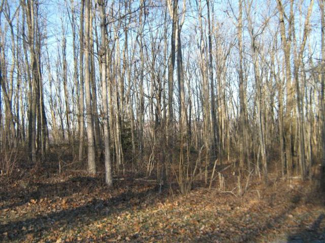 Renegade Mountain Pkwy, Crab Orchard, TN 37723 (#995175) :: Billy Houston Group