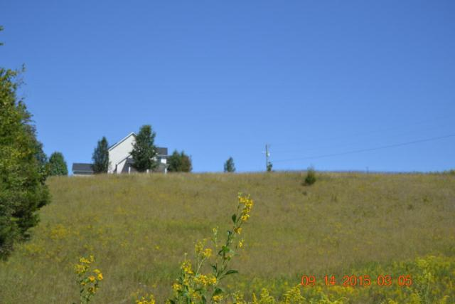 Valley View, Maynardville, TN 37807 (#996057) :: Billy Houston Group