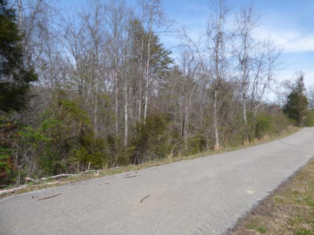 399 Black Oak Rd, Harriman, TN 37748 (#996245) :: Billy Houston Group