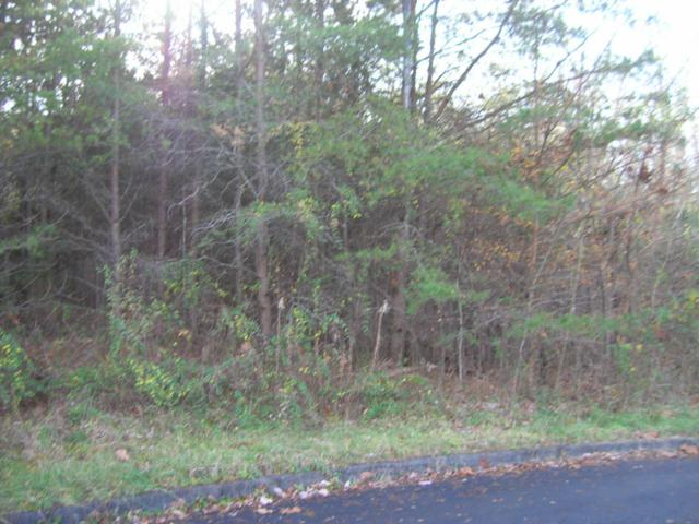 Vigil Drive, Seymour, TN 37865 (#996732) :: Billy Houston Group