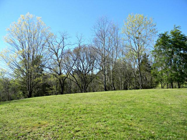 1873 Bouldercrest Drive, Dandridge, TN 37725 (#999311) :: Billy Houston Group