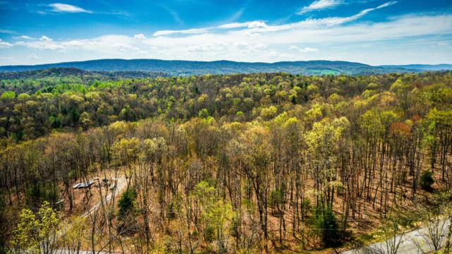 Green Ridge Trail - Lot #35, Harriman, TN 37748 (#999317) :: Adam Wilson Realty