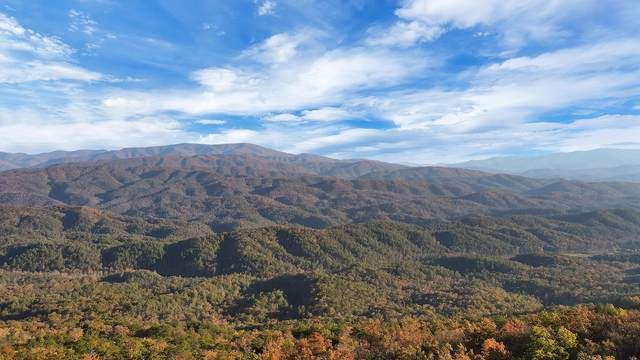 Tract 29r5 Chilhowee Mountain Tr, Maryville, TN 37803 (#1001536) :: The Cook Team