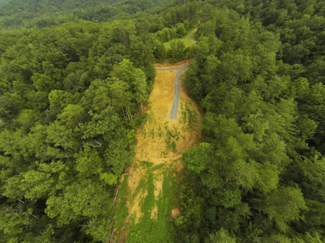 Lot 4 Heritage Drive, Tellico Plains, TN 37385 (#1004853) :: Shannon Foster Boline Group