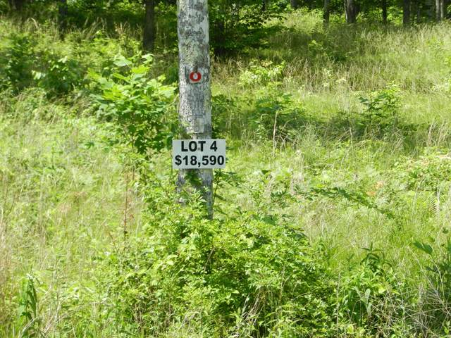 Lot 4 Toomey Falls Rd, Oneida, TN 37841 (#1005822) :: The Cook Team