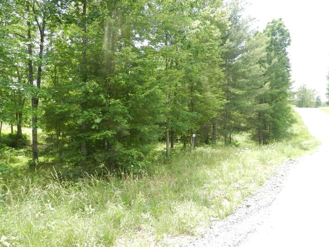 Lot 16 Toomey Falls Rd, Oneida, TN 37841 (#1005876) :: Venture Real Estate Services, Inc.