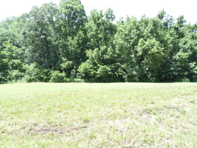 Meadowcrest, Dandridge, TN 37725 (#1007585) :: Billy Houston Group