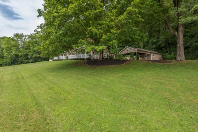 5102 Holston Drive, Knoxville, TN 37914 (#1007651) :: Realty Executives Associates