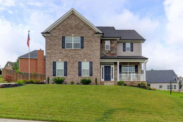 6035 Pembridge Rd, Knoxville, TN 37912 (#1008503) :: Billy Houston Group