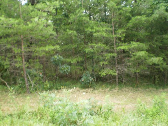 Magnolia Lane, Crossville, TN 38555 (#1009647) :: Shannon Foster Boline Group