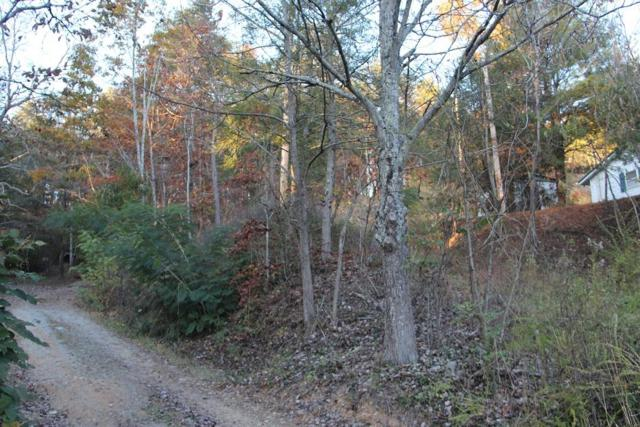 Lot 1 Cedar Rd, Pigeon Forge, TN 37863 (#1010045) :: Billy Houston Group