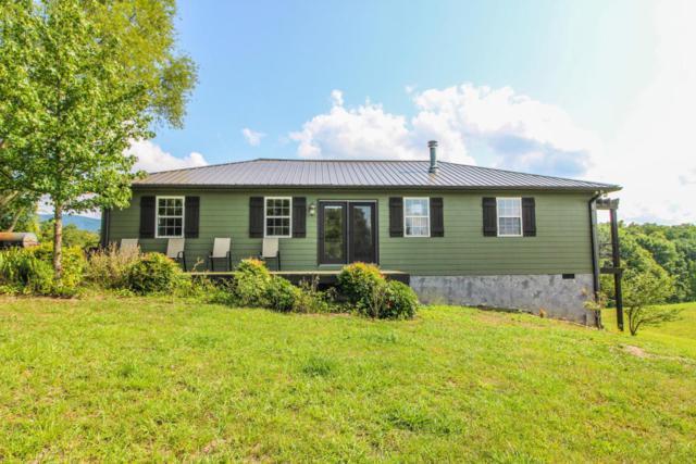 611 Davis Blvd, Seymour, TN 37865 (#1012815) :: Shannon Foster Boline Group