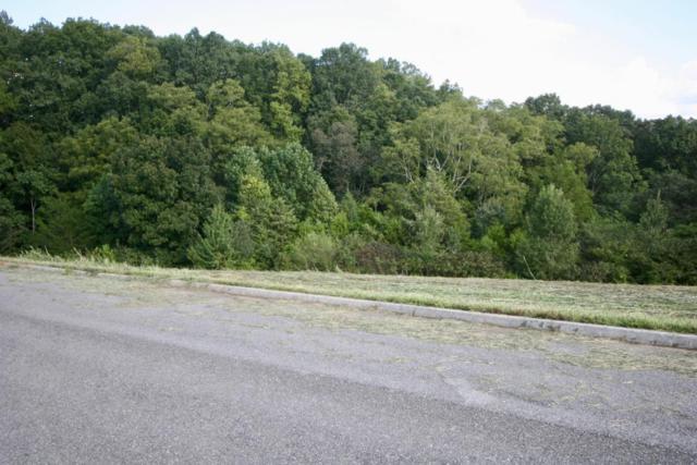 Hidden Meadow Lane, Sweetwater, TN 37874 (#1013369) :: Shannon Foster Boline Group