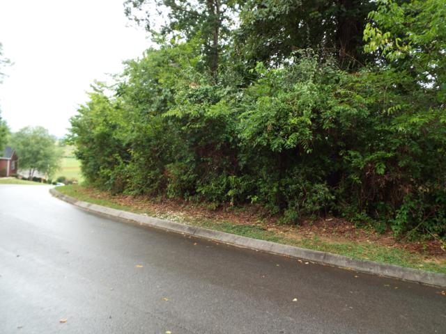 Lot 35 Benjamin Blvd, Sevierville, TN 37876 (#1014812) :: Venture Real Estate Services, Inc.