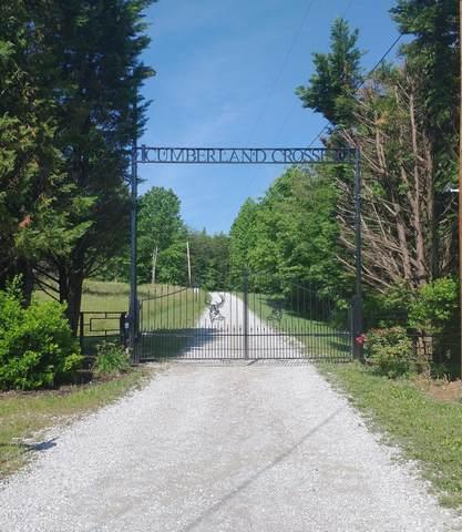 Woodland Trail, Sunbright, TN 37872 (#1014845) :: Realty Executives Associates