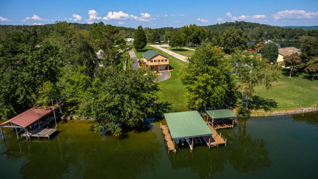 330 Lake Forest Lane, Spring City, TN 37381 (#1016142) :: Shannon Foster Boline Group