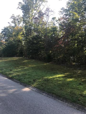 Northbridge Close, Lot 93, Kingston, TN 37763 (#1017019) :: Shannon Foster Boline Group