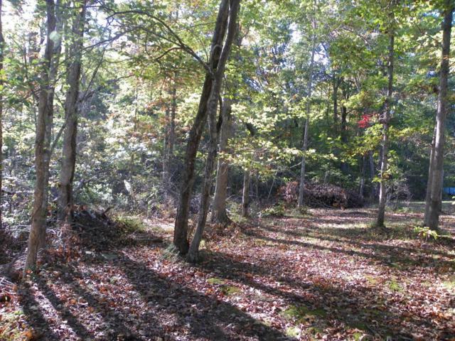 Spruce Loop, Crossville, TN 38555 (#1017073) :: Billy Houston Group