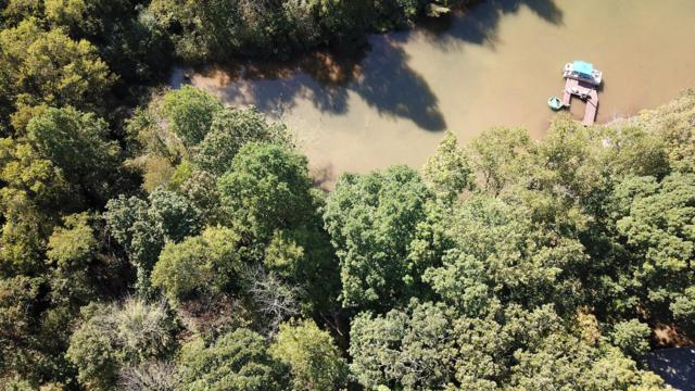 Lot 8 Sequoia Drive, Vonore, TN 37885 (#1017997) :: Billy Houston Group