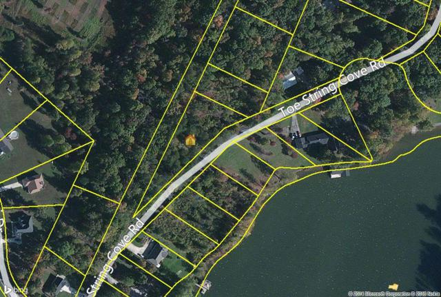 Lot 55 Toestring Cove Rd, Spring City, TN 37381 (#1018050) :: Billy Houston Group