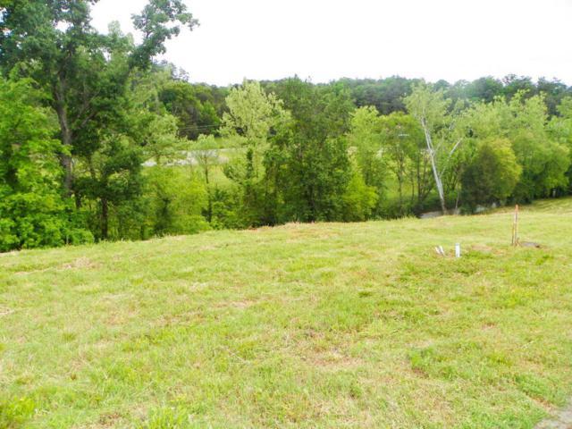 3146 Cherokee Valley Drive, Sevierville, TN 37862 (#1018340) :: The Terrell Team