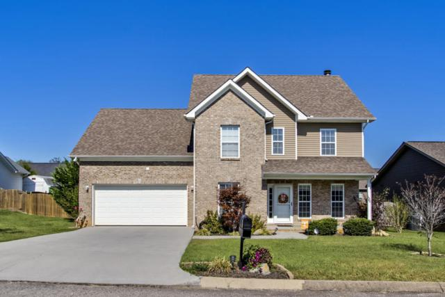 8441 Reality Lane, Corryton, TN 37721 (#1019447) :: Shannon Foster Boline Group