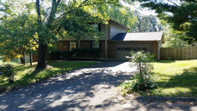 413 Barbara Lane, Knoxville, TN 37934 (#1019528) :: Shannon Foster Boline Group