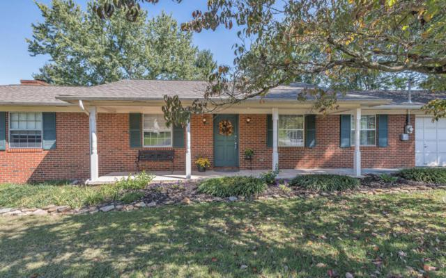 224 Mcfee Rd, Knoxville, TN 37934 (#1019633) :: Shannon Foster Boline Group
