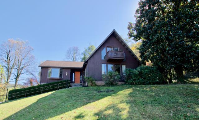 341 E Chestnut Hill Rd, Townsend, TN 37882 (#1020981) :: Billy Houston Group