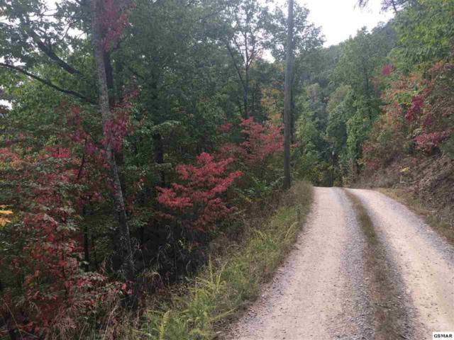 Lonesome Pine Way Off Way, Sevierville, TN 37862 (#1021244) :: Billy Houston Group