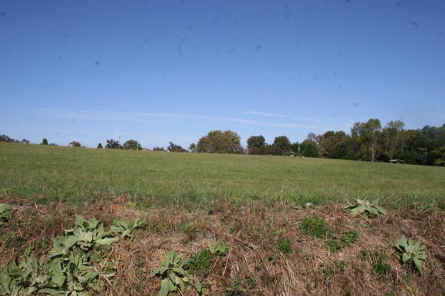 123 Fagin Lane, Madisonville, TN 37354 (#1022688) :: Billy Houston Group