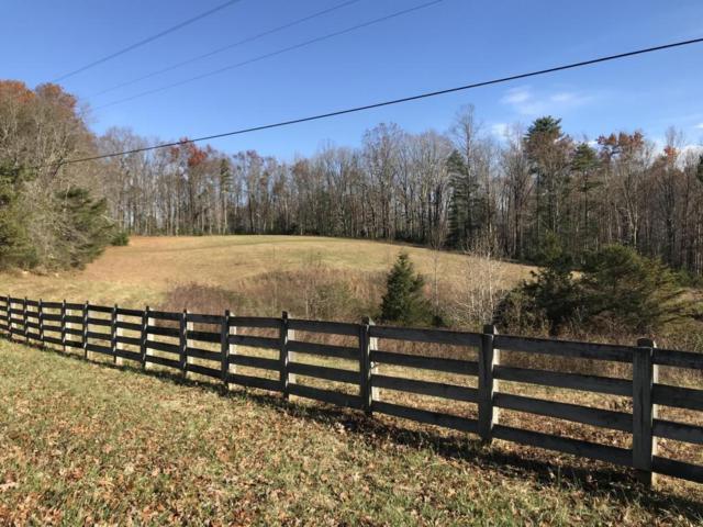Leatherwood Ford Rd, Jamestown, TN 38556 (#1023411) :: Realty Executives Associates