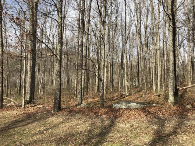 Brush Mountain Farms Circle, Miracle, KY 40856 (#1025485) :: CENTURY 21 Legacy