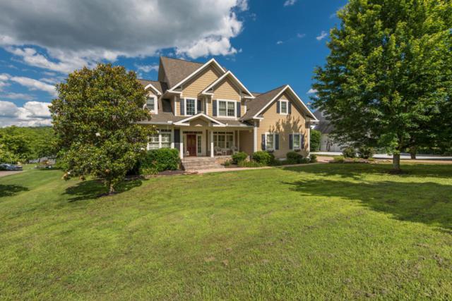 3710 Riverbrook Drive, Louisville, TN 37777 (#1025595) :: SMOKY's Real Estate LLC