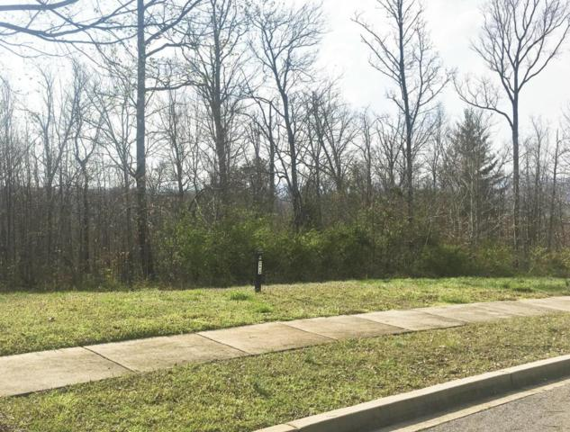 12793 Highwick Circle, Knoxville, TN 37934 (#1025987) :: Billy Houston Group
