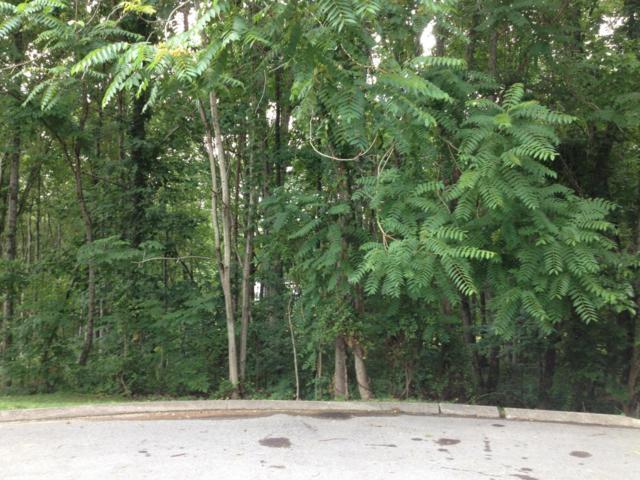 Quail Hollow Lane, Clinton, TN 37716 (#1026417) :: Billy Houston Group