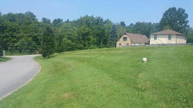 7860 Mendonhall Estates Blvd, Knoxville, TN 37938 (#1026440) :: Billy Houston Group