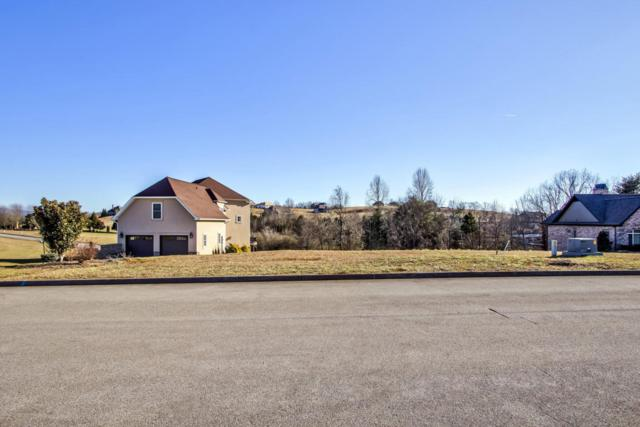 1641 Rarity Bay Parkway, Vonore, TN 37885 (#1027344) :: Shannon Foster Boline Group