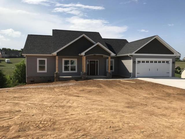 Vista Meadows Lane, Sevierville, TN 37876 (#1029706) :: Shannon Foster Boline Group