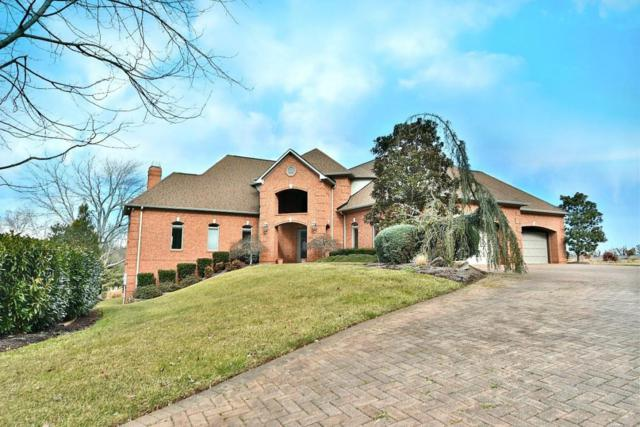 9201 Double Eagle Lane, Knoxville, TN 37922 (#1029814) :: Billy Houston Group