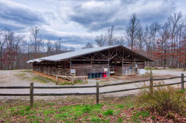 1426 Darrow Ridge, Jamestown, TN 38556 (#1029893) :: SMOKY's Real Estate LLC