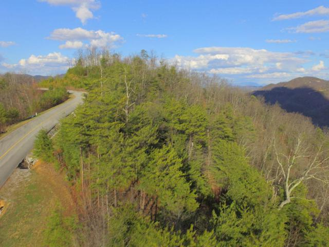 Lot 48W Long Rifle Rd, Walland, TN 37886 (#1029987) :: Billy Houston Group