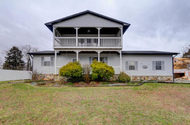 6229 Mcneely Rd, Corryton, TN 37721 (#1030167) :: Shannon Foster Boline Group